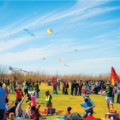 The Cultural Kite Festival Offers Community Fun  in a New Home