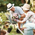 7 Tips for Summer Gardening Success