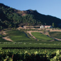 Eleven Great Wineries