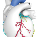 Houston Methodist Sugar Land Hospital Now Using Heartflow Advanced 3D Imaging to Better Diagnose Coronary Artery Disease
