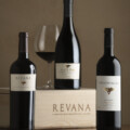 Dr. Revana and His Journey into the World of Wine