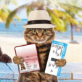 What's Trending in Travel: Pets on Board