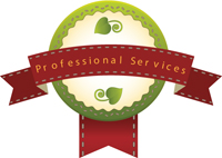 200-professionals